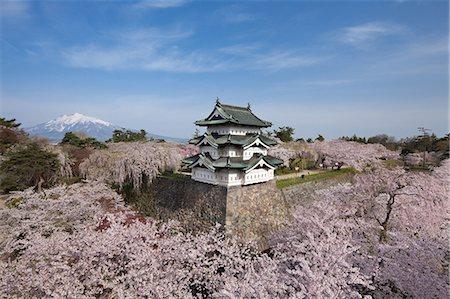 Hirosaki Castle, Aomori Prefecture, Japan Stock Photo - Rights-Managed, Code: 859-06380179