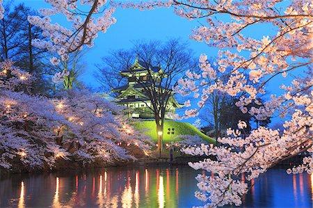 Yozakura Takada, Niigata Prefecture, Japan Stock Photo - Rights-Managed, Code: 859-06380299
