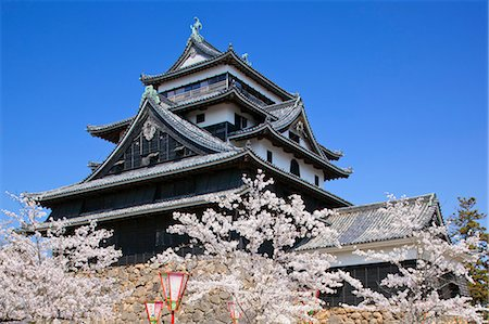 Cherry Blossoms At Matsue Castle, Shimane Prefecture, Japan Stock Photo - Rights-Managed, Code: 859-06380328