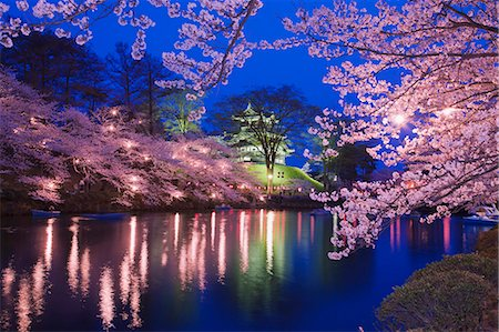 Yozakura,Takada Castle, Niigata Prefecture, Japan Stock Photo - Rights-Managed, Code: 859-06380335
