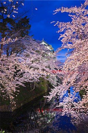 Hirosaki Castle, Aomori Prefecture, Japan Stock Photo - Rights-Managed, Code: 859-06380340