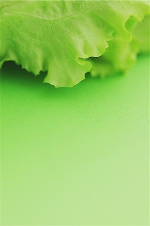 Green lettuce Stock Photo - Rights-Managed, Code: 859-06470061