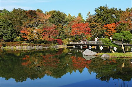 fall - Japanese Garden at Showa Kinen Park, Tokyo Stock Photo - Rights-Managed, Code: 859-06710977