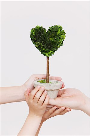 Hands holding heart-shaped plant Stock Photo - Rights-Managed, Code: 859-06808637