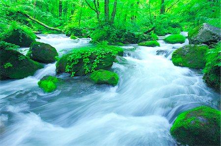 Oirase mountain stream, Aomori Prefecture Stock Photo - Rights-Managed, Code: 859-07441416