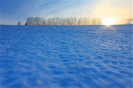 fantastically - Biei, Hokkaido Stock Photo - Rights-Managed, Code: 859-07441822