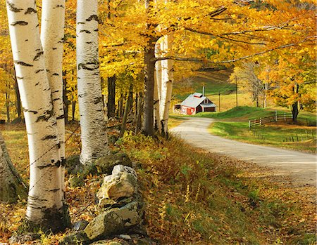 Autumn colors Stock Photo - Rights-Managed, Code: 859-07441994