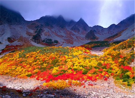 fantastically - Autumn colors Stock Photo - Rights-Managed, Code: 859-07442097