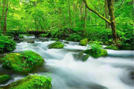 Aomori Prefecture, Japan Stock Photo - Rights-Managed, Code: 859-07635806