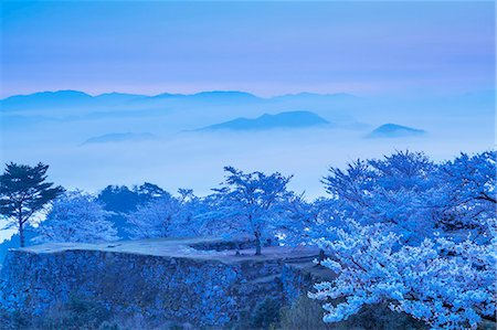 Hyogo Prefecture, Japan Stock Photo - Rights-Managed, Code: 859-07635800