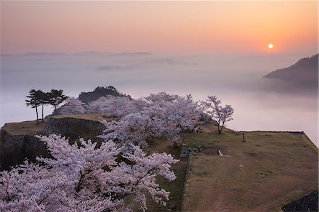 Hyogo Prefecture, Japan Stock Photo - Rights-Managed, Code: 859-07783624