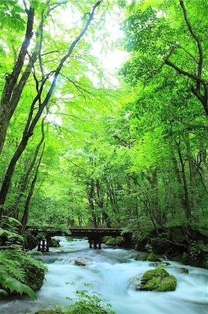 Aomori Prefecture, Japan Stock Photo - Rights-Managed, Code: 859-08359325