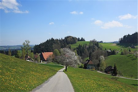 rustique - Switzerland, Canton Barn, Emmental Photographie de stock - Rights-Managed, Code: 859-08769832