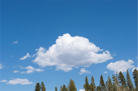 fluffy - Fluffy Clouds Stock Photo - Rights-Managed, Code: 859-03037537