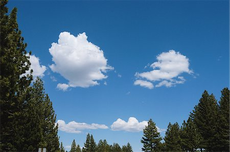 fluffy - Fluffy Clouds in Sky Stock Photo - Rights-Managed, Code: 859-03037539