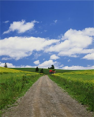 Country road Stock Photo - Rights-Managed, Code: 859-03039658