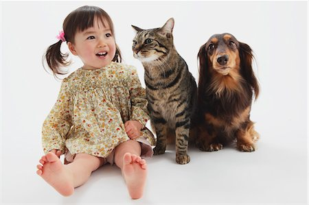 Japanese Cat-Miniature Dachshund And A Girl Stock Photo - Rights-Managed, Code: 859-03599525