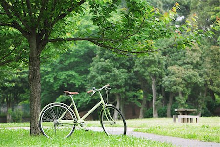 Bicycle Parked In Parkland Stock Photo - Rights-Managed, Code: 859-03884538