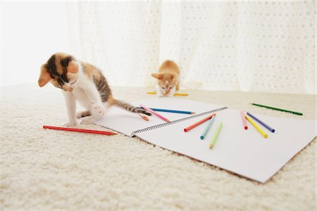 Baby Kitten Playing With Notebook And Colored Pencils Stock Photo - Rights-Managed, Code: 859-03982937
