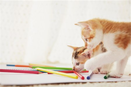 Two Baby Kitten Playing With Notebook And Colored Pencils Stock Photo - Rights-Managed, Code: 859-03982932