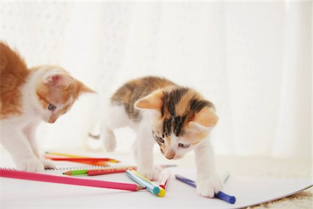 Baby Kitten Playing With Notebook And Colored Pencils Stock Photo - Rights-Managed, Code: 859-03982933
