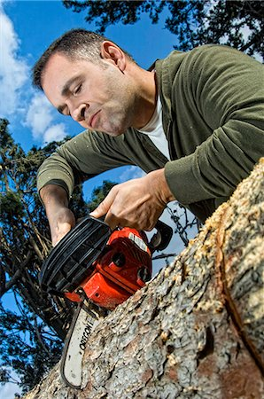 forestry - Man sawing log Stock Photo - Rights-Managed, Code: 853-06623201