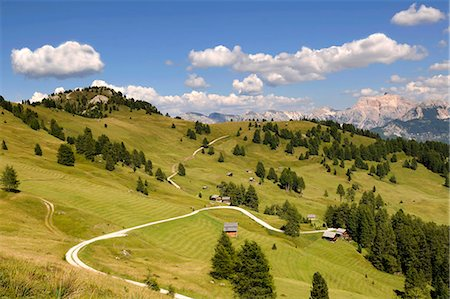 Alpine meadowas in Puez-Geisler Nature Park, Dolomites, South Tyrol, Italy Stock Photo - Rights-Managed, Code: 853-07026677