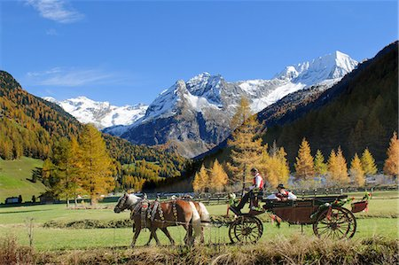 Carriage in the Rieserferner-Ahrn Nature Park, South Tyrol, Italy Stock Photo - Rights-Managed, Code: 853-07026691