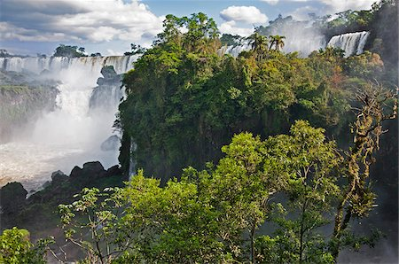 people in argentina - The spectacular Iguazu Falls of the IguazuNational Park, a World Heritage Site, with a Black Vulture in a nearby tree. Argentina Stock Photo - Rights-Managed, Code: 862-05996713
