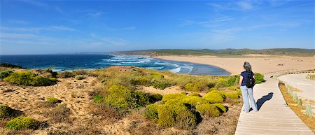 The flora and the vastness of the coastline in the Sudoeste Alentejano and Costa Vicentina Natural Park. Algarve, Portugal Stock Photo - Rights-Managed, Code: 862-05998810