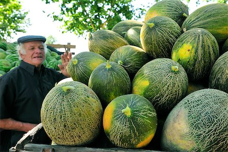 portuguese (places and things) - Melon market. Alpiarca, Portugal Stock Photo - Rights-Managed, Code: 862-05998843