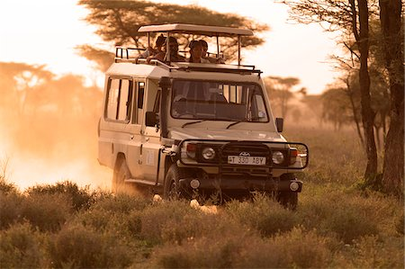 serengeti national park - Safari vehicle on a game drive at dusk in the Ndutu region of the Serengeti National Park, Tanzania. Stock Photo - Rights-Managed, Code: 862-05999564