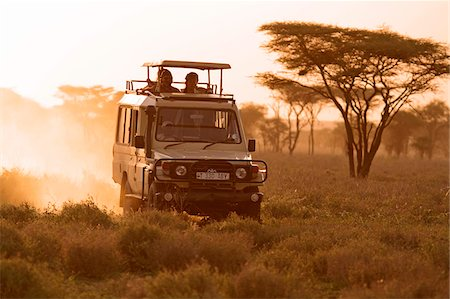 serengeti national park - Safari vehicle on a game drive at dusk in the Ndutu region of the Serengeti National Park, Tanzania. Stock Photo - Rights-Managed, Code: 862-05999563