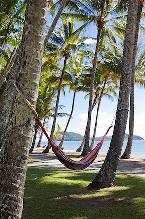 Australia, Queensland, Cairns.  Hammocks amongst coconut palms at Palm Cove. Stock Photo - Rights-Managed, Code: 862-06540765