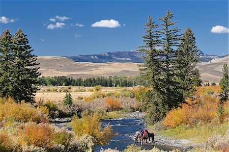 Cowboys along Wind River, near Dubois, Wyoming, USA Stock Photo - Rights-Managed, Code: 862-06543387