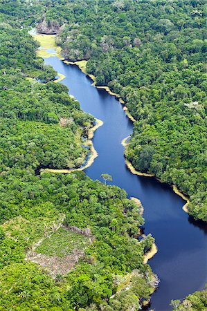 Brazil, Amazon, Aerial view of an igapo, black water creek, in the Amazon forest near Manaus Stock Photo - Rights-Managed, Code: 862-06675832