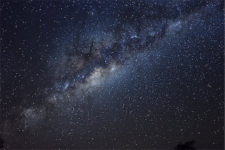 star - Africa, Namibia, Caprivi, Bwa Bwata National Park, Night Sky showing the milky way Stock Photo - Rights-Managed, Code: 862-06677186