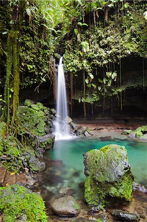 Dominica, Castle Bruce. Emerald Pool, one of the most popular tourist attractions of Dominica. Stock Photo - Rights-Managed, Code: 862-06825284