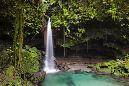 Dominica, Castle Bruce. Emerald Pool, one of the most popular tourist attractions of Dominica. Stock Photo - Rights-Managed, Code: 862-06825286