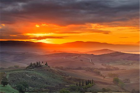Italy, Tuscany, Siena district, Orcia Valley, Podere Belvedere near San Quirico d'Orcia. Stock Photo - Rights-Managed, Code: 862-07690172