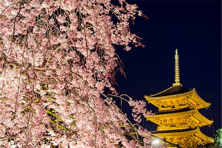 symbol - Blooming cherry tree illuminated at night with pagoda of Toji Temple behind, Kyoto, Japan Stock Photo - Rights-Managed, Code: 862-07910157