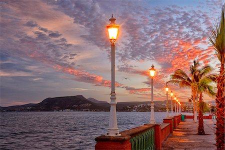 palm - Waterfront at dawn, Baja California, Mexico Stock Photo - Rights-Managed, Code: 862-07910243
