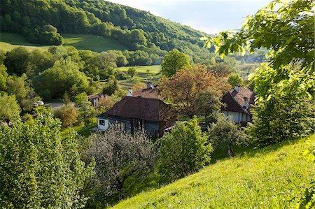 Romania, Transylvania, Zalanpatak. The guesthouses at Zalanpatak owned by The Prince of Wales. Stock Photo - Rights-Managed, Code: 862-07910661