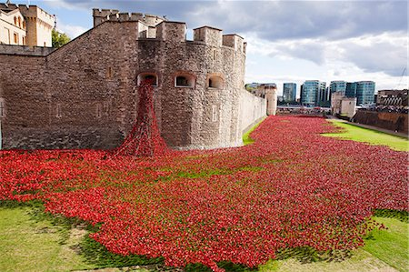 UK, England, London. Blood Swept Lands and Seas of Red, a major art installation at the Tower of London, marking one hundred years since the first full day of Britain's involvement in the First World War. Stock Photo - Rights-Managed, Code: 862-08090101
