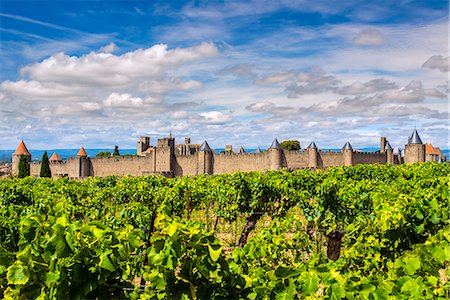 france - Vineyard with the medieval fortified citadel behind, Carcassonne, Languedoc-Roussillon, France Stock Photo - Rights-Managed, Code: 862-08090141