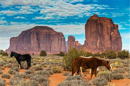 Horses grazing with buttes behind, Monument Valley Navajo Tribal Park, Arizona, USA Stock Photo - Rights-Managed, Code: 862-08091457