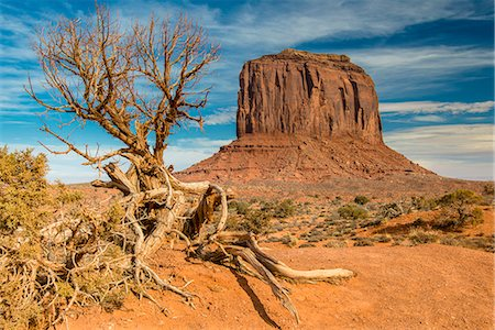East Mitten Butte, Monument Valley Navajo Tribal Park, Arizona, USA Stock Photo - Rights-Managed, Code: 862-08091460
