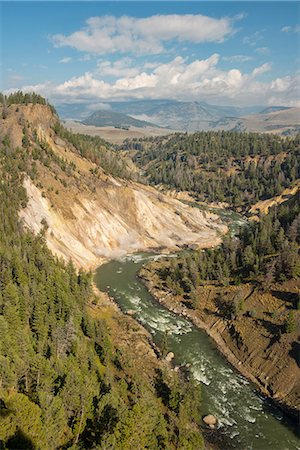 USA, Wyoming, Rockies, Rocky Mountains, Yellowstone, National Park, UNESCO, World Heritage, Grand Canyon of the Yellowstone looking towards Gardiner valley, Stock Photo - Rights-Managed, Code: 862-08091564