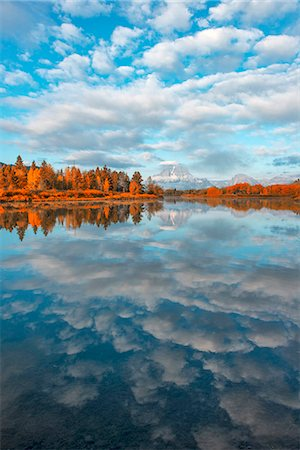 USA, Wyoming, Rockies, Rocky Mountains, Grand Teton, National Park, fall landscape at oxbow bend of the Snake river Stock Photo - Rights-Managed, Code: 862-08091560