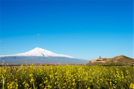 Eurasia, Caucasus region, Armenia, Khor Virap monastery, Mount Ararat (5137m) highest mountain in Turkey photographed from Armenia Stock Photo - Rights-Managed, Code: 862-08272833